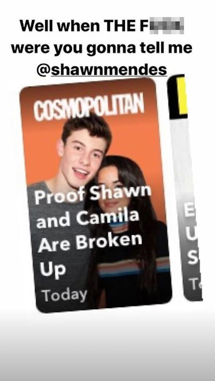 Camila hilariously shuts down those Shawn breakup rumours